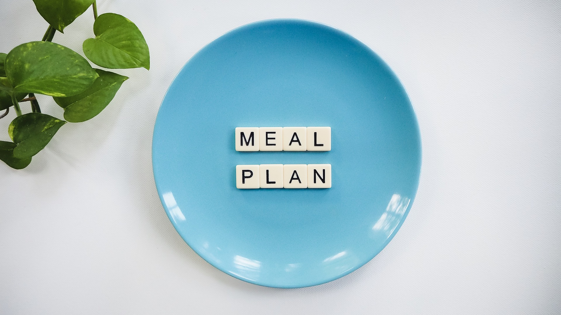 Meal Plan - Health Doctoring