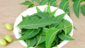 Neem fever home remedy